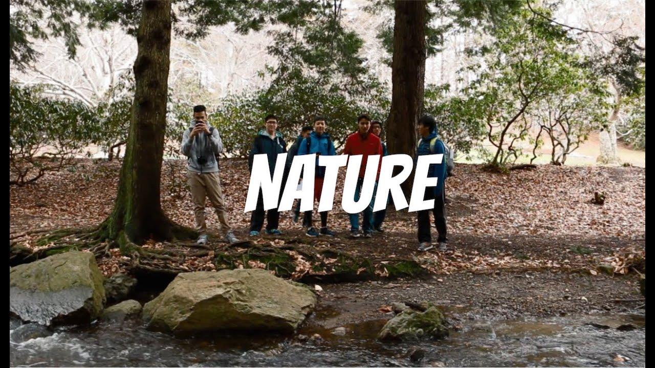 Exploring Arnold Arboretum in Boston - YouTube