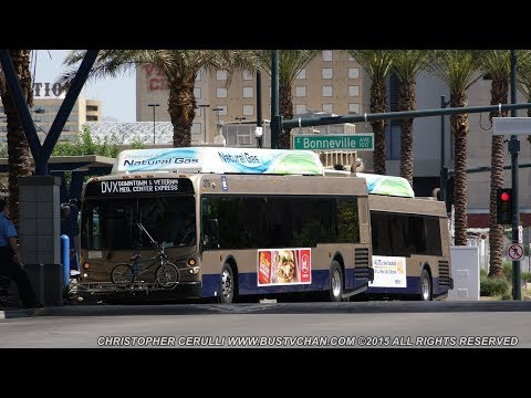 THE BUSES OF REGIONAL TRANSPORTATION COMMISSION ( RTC ) LAS VEGAS NV
