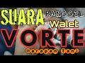Suara Panggil Burung Walet Vorte  Mp3 - Mp4 Download