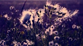 Imbaru - Los Cantos de la Primavera