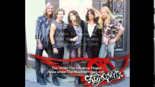 "Aerosmith Tribute Band ""Aeromyth"" Singer Chris Van Dahl"
