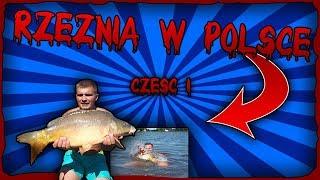 Rzeźnia w Polsce. Ponad 200 kg ryb!!! Przystanek Stawy w Grębowie cz. 1