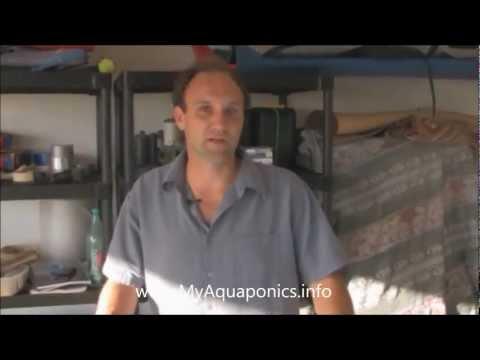 Aquaponics Made Easy! Incredible DIY Aquaponics Plans for a Backyard System