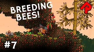 Repeat youtube video Breeding Bees & Crafting Radiation Shield | Let's Play Starbound Frackin'  Universe mod ep 7