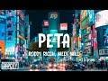 Roddy Ricch - Peta ft. Meek Mill (Lyrics)