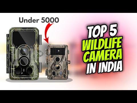 Top 5 Best Trail Wildlife Camera In India 2021 | Trail Wildlife Camera Under 5000 | Choice Point