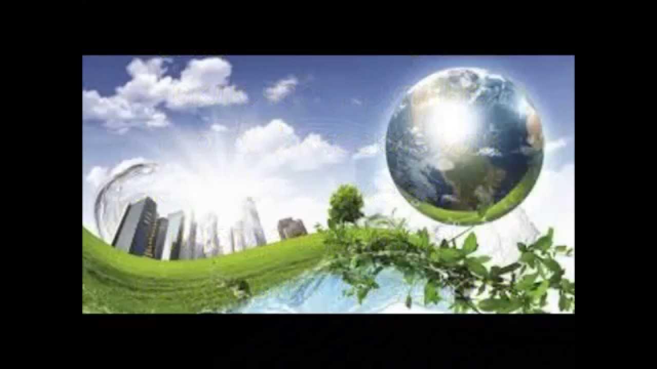 Экологическая безопасность Презентация ОБЖ класс  Экологическая безопасность Презентация ОБЖ 8 класс