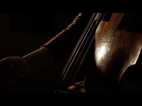 Rinascimento Update 1.1 Viola da Gamba and Percussion