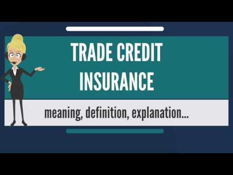 What is TRADE CREDIT INSURANCE? What does TRADE CREDIT INSURANCE mean?