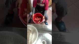 臺灣產3月(春天)紅玉桃DIY簡單製作材料: 紅玉桃、紅砂糖、食鹽、冷開水。依個人喜好加減量。
