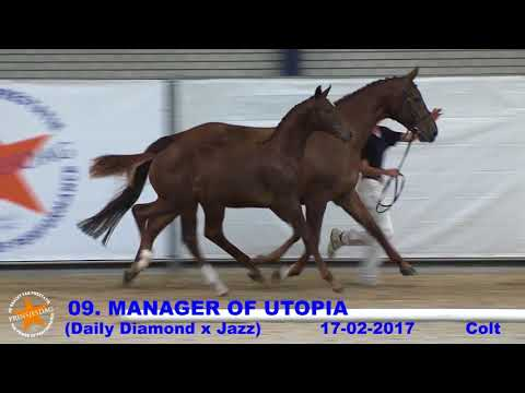 09.  Manager of Utopia (Daily Diamond x Jazz) - www.prinsjesdag.eu