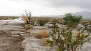This video clip records a flash flood that occurred at approximatel...