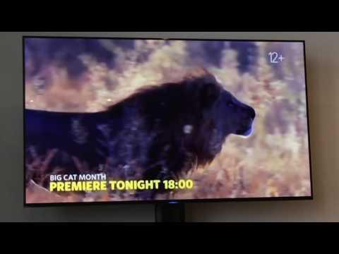 Adverts Nat Geo Wild