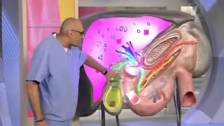 видео Повышенная АЛТ в крови: причины и лечение у взрослых