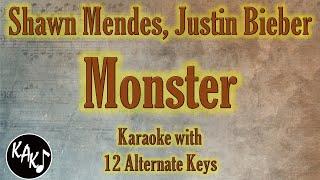 Download Monster Karaoke - Shawn Mendes Justin Bieber Instrumental Lower Higher Female Original Key