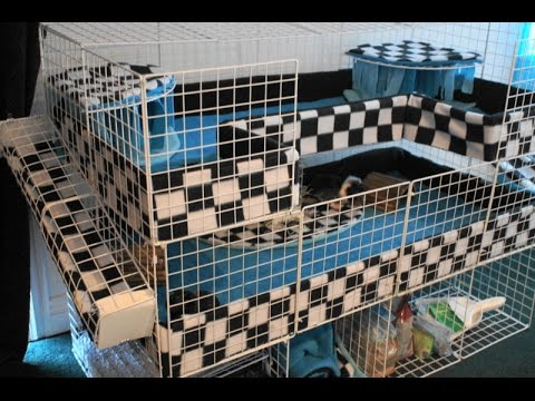 Finished c c guinea pig cage tour youtube for 2 story guinea pig cages for sale