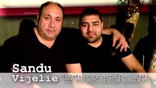 Sandu Vijelie - Mama ce iti da viata ( Oficial Audio )