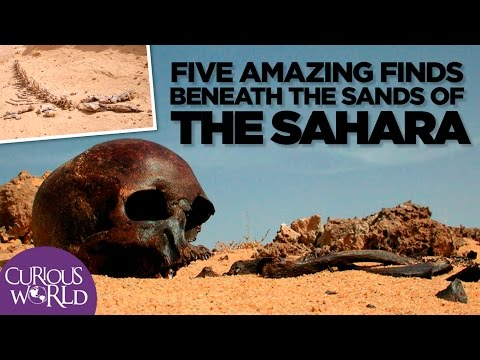5 Amazing Finds Beneath the Sands of the Sahara