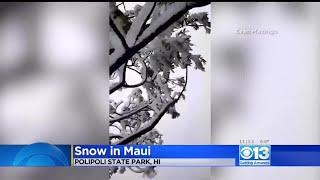 Snow Falls In Hawaii