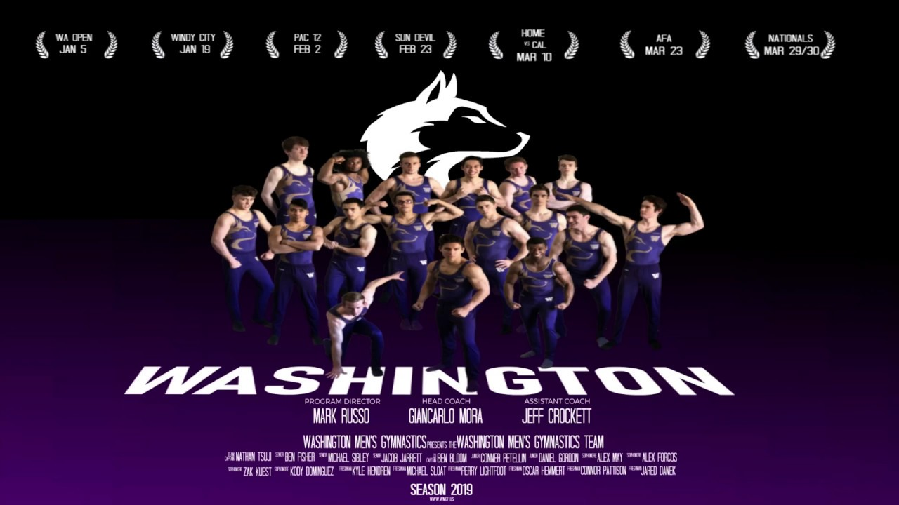 Image result for washington men's gymnastics 2019