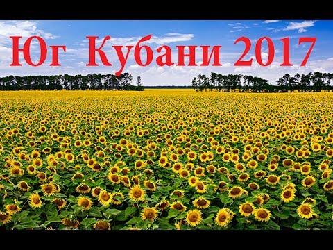 Город Краснодар: климат, экология, районы, экономика
