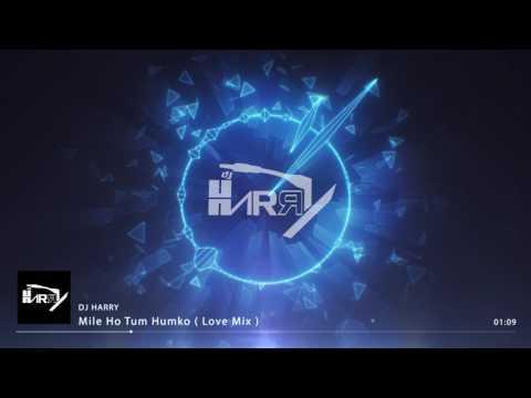 Dj Harry   Mile Ho Tum Humko ( Love Mix)