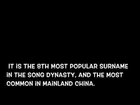 Wang Surname