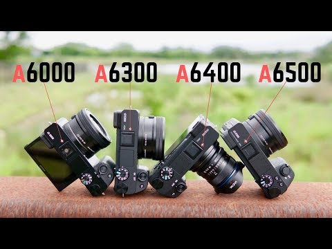 Sony A6000 vs A6300 vs A6400 vs A6500: A Buying Guide
