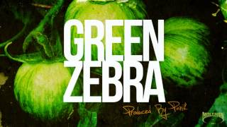 Panik - Green Zebra - instrumental - Molemen Records 2013 - free download