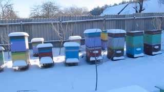 Подкормка пчел зимой (обогрев улья)