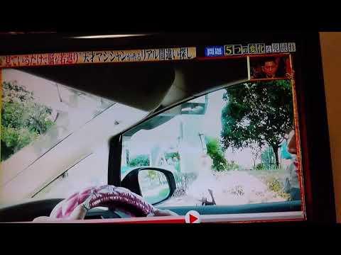 飯村貴子動画