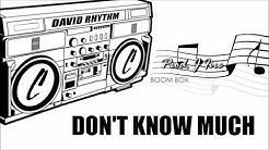 David Rhythm - Don't Know Much