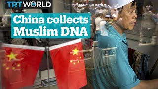 China collecting biometric data from Xinjiang residents