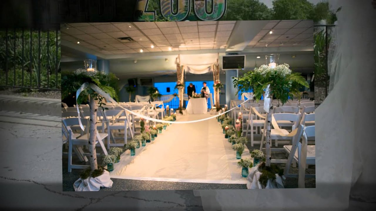 20 Best Weddings At Brookfield Zoo Images On Pinterest Dream