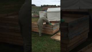 Abbotstone Pest Control - 07890 297820