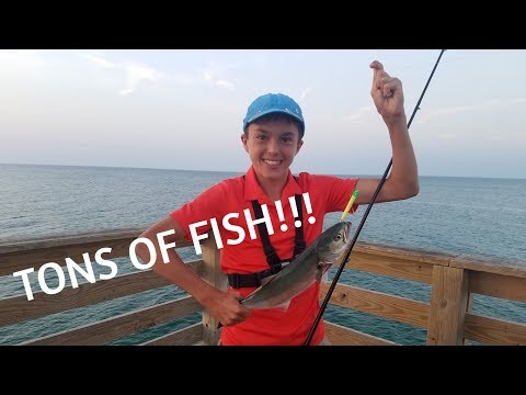 INSANE Multispecies Pier Fishing The Outer Banks! (pt.1)