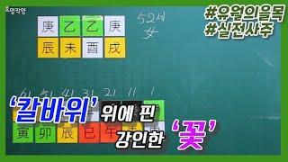 [중급] 61강 - 유(酉)월의 을목 실전사주