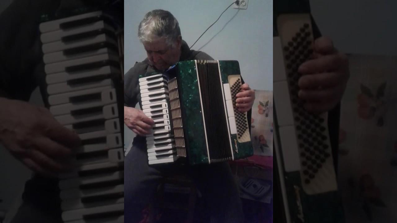 Muzica Acordeon Muzica De Petrecere Nunti Botez Raileanu Ion