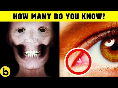 19 Facts About The Human Body That You Didn't Know