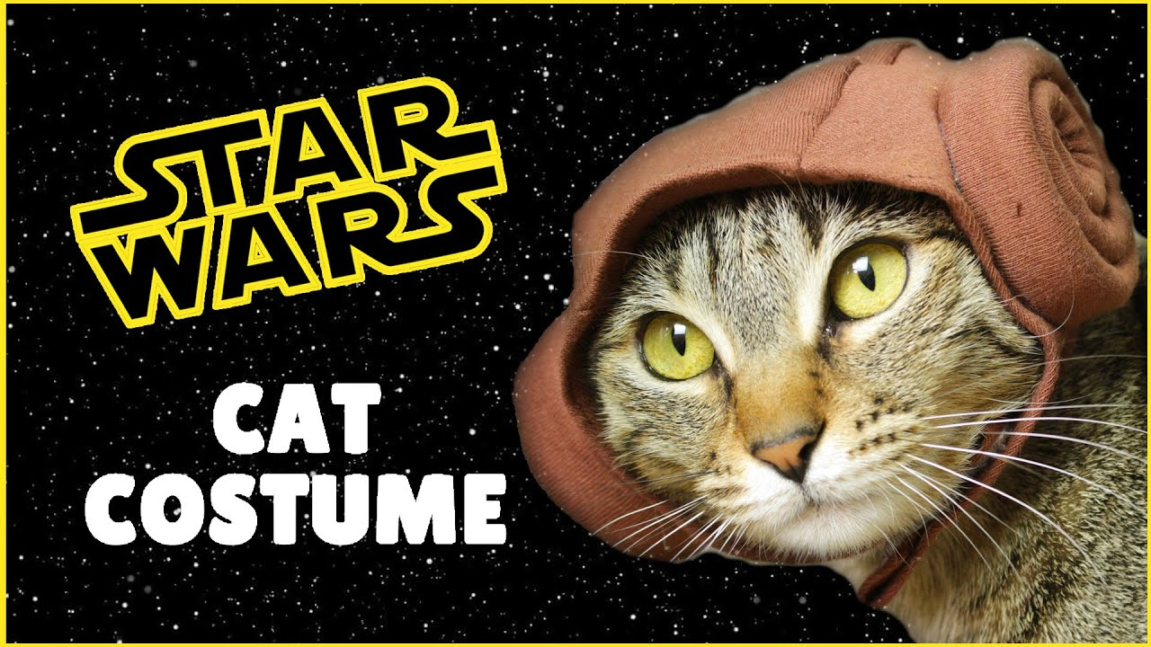 DIY Star Wars Princess Leia Cat Costume | DIY Princess Leia Costume | DIY Pet Costume - YouTube & DIY Star Wars Princess Leia Cat Costume | DIY Princess Leia Costume ...