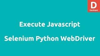 Execute Javascript using Selenium Python