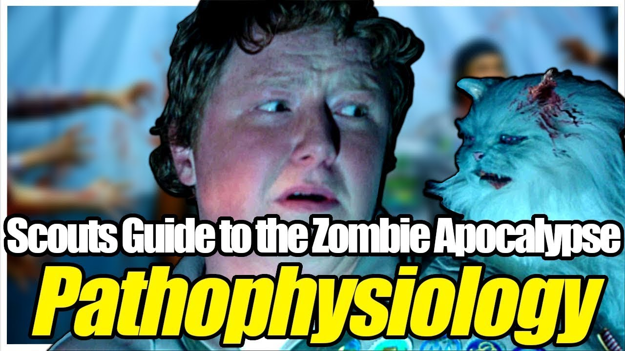 Download Zombie Virus Explored in Scouts Guide to the Zombie Apocalypse   How Infection Affects Mammals