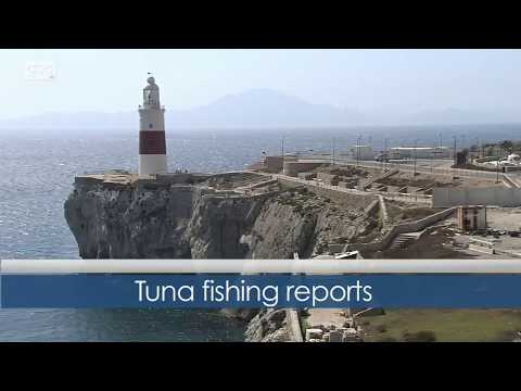 A new poltical movement for Gibraltar    Newswatch    GBC TV