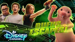 Find the Mole Rat🔍 | Kim Hushable | Disney Channel Original Movie