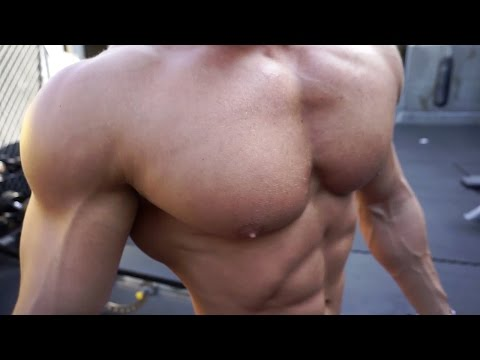 Outdoor Chest and Shoulder Workout Golds Gym Venice