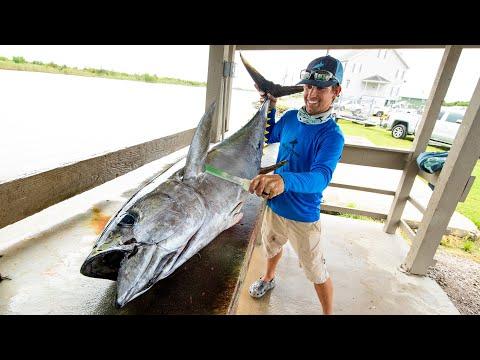 Yellowfin Tuna, Wahoo, Cobia & Dolphin Fish | Clean N Cook