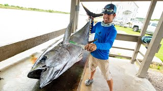Yellowfin Tuna, Wahoo, Cobia & Dolphin Fish | Clean N Cook