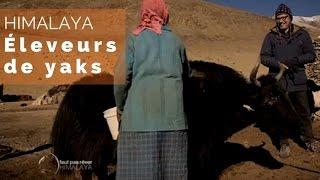 Philippe Gougler arrive dans un campement d'éleveurs de yaks et de ...
