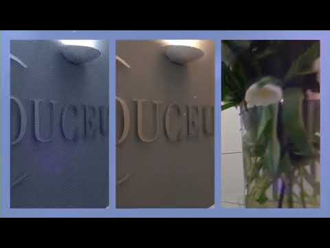 Download Duceus Intro Unternehmen