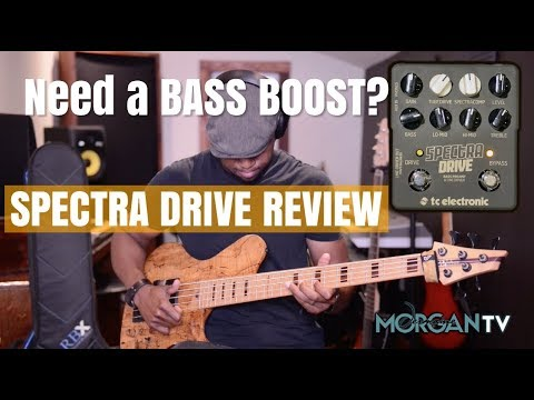 MORE BASS PLEASE! Spectra Drive Review - JERMAINE MORGAN TV #tcelectronic #basspreamp
